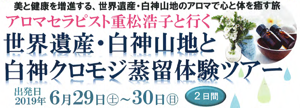 banner20190629